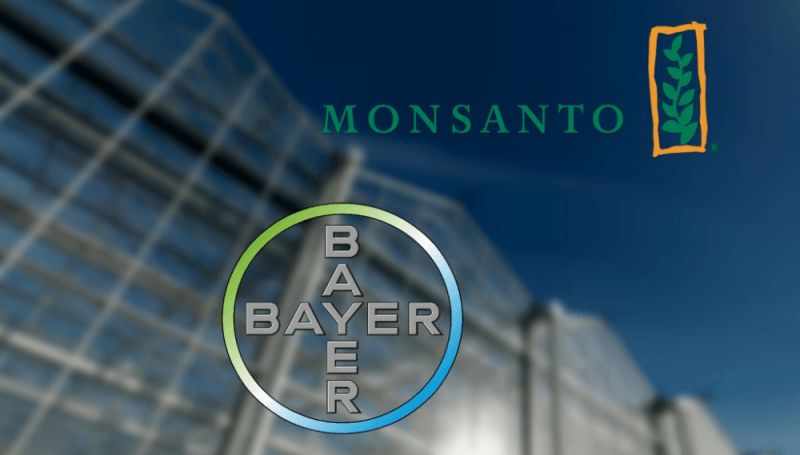 Germany : Bayer sweetens Monsanto bid as talks enter final stretch