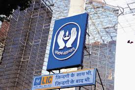 LIC to slow stock investments after bumper buy